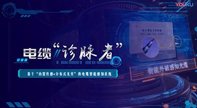 青岛国网案例
